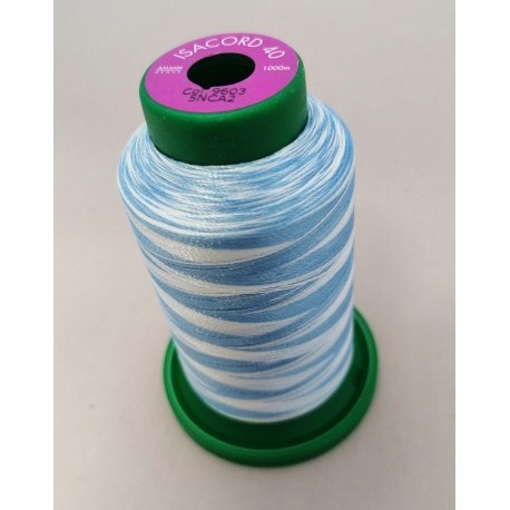 Fil à broder polyester continu multicolore